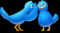Twitter: Follow me!